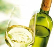 Weinviertel DAC Präsentation